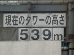 tokyo0101111517.jpg