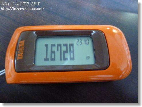 tokyo2202132338.jpg
