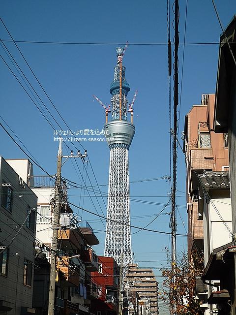 tokyo2712101153.jpg