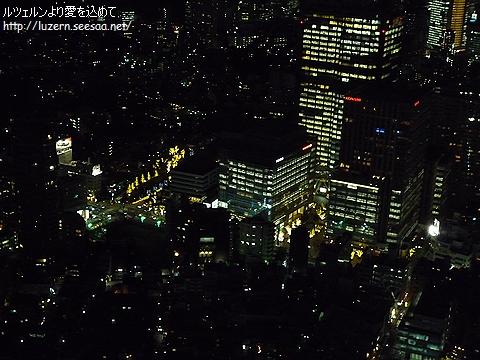 tokyo2712101708.jpg