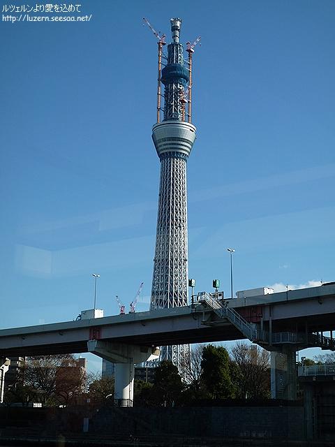 tokyo2912101304.jpg
