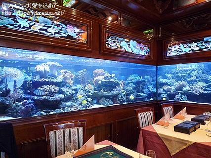 shanghai32403101200.jpg