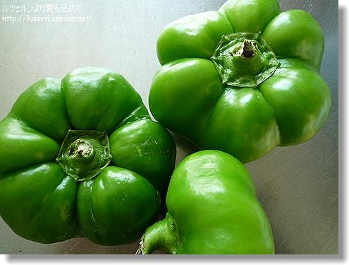 tomatenpaprika2707111133.jpg
